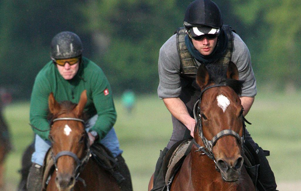 rennstall-uwe-stech-partner-sponsoren-pferderennen